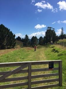 Waitawa 1